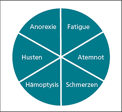 Abb. 3: LCSS (Lung cancer symptom scale).