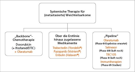 Abb. 1: Vereinfachte schematische Darstellung der aktuellen Therapieoptionen beim metastasierten Weichgewebesarkom.