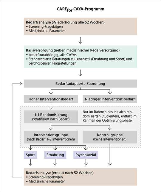 Abb. 1: Ablauf CARE for CAYA-Programm