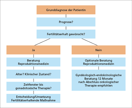 Abb. 1: Entscheidungsbaum von der Grunddiagnose bis zur Wahl der fertilitätserhaltenden Maßnahme.
