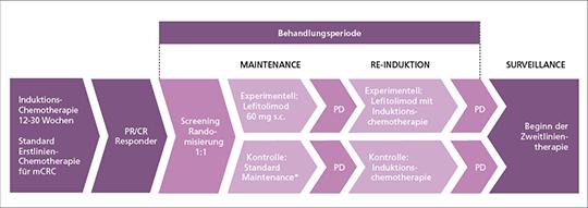 Abb. 1: Studiendesign.