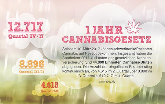 1 Jahr Cannabisgesetz