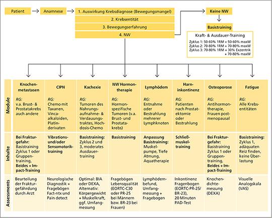 Trainings- und Modulinhalte der OTT