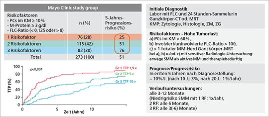 Abb. 2B: Risikostratifizierungsmodell SMM