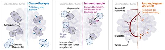 Abb. 2: LUME-Lung 1: Gesamtüberleben bei europäischen Adenokarzinom-Patienten in der Zweitlinie (mod. nach (11, a)).