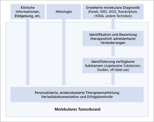 Abb. 1: Interdisziplinäres Molekulares Tumorboard.