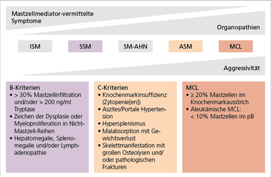 Abb. 1: Klassifizierung des Mastozytose-Subtyps (mod. nach (26)).