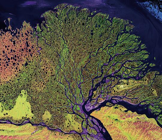 Exemplarische Darstellung Fluss-Delta