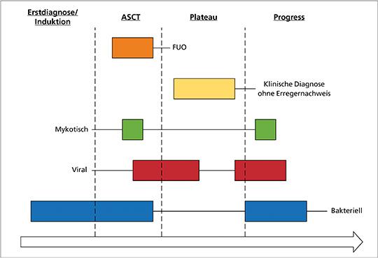 Infektionsmuster beim Multiplen Myelom