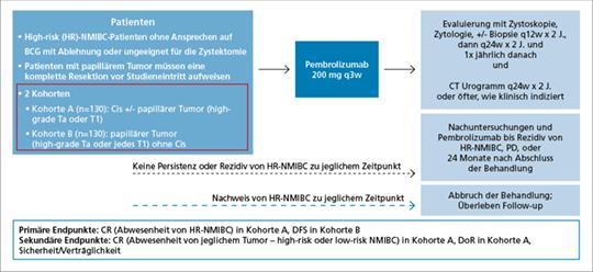 Abb. 1: Studiendesign der Keynote-057-Studie, einer einarmigen, offenen Phase-II-Studie (NCT02625961) (mod. nach (5)).