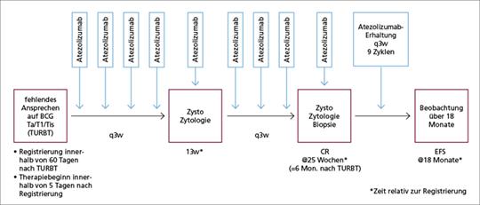 Abb. 3: Studiendesign der SWOGS1605-Studie, einer einarmigen Phase-II-Studie (NCT02844816) (mod. nach (7)).