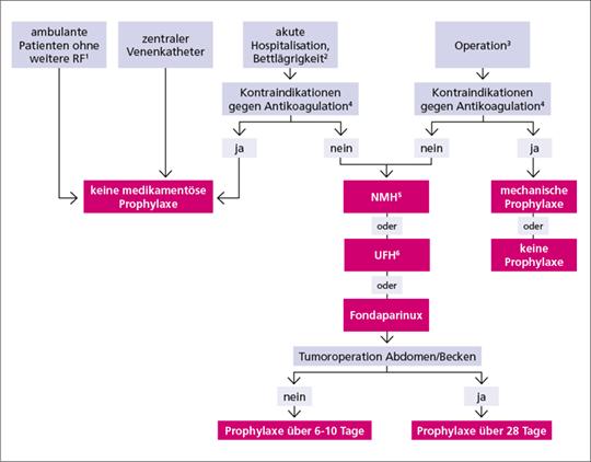Abb. 1: Primärprophylaxe (mod. nach (2)).