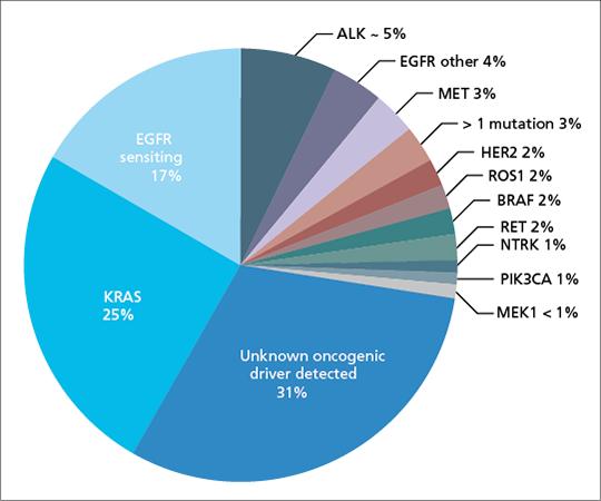 Abb. 2: Molekulare Klassifikation beim Adenokarzinom der Lunge.