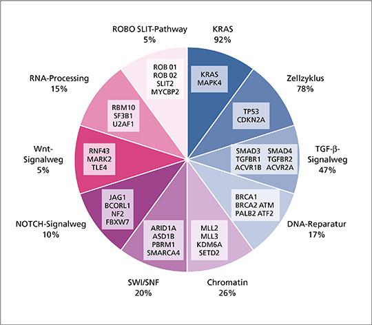 Abb. 1: Molekulare Schlüsselsignalwege und Mutationen