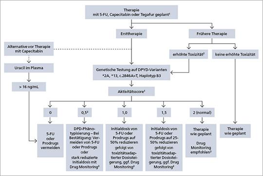 Abb. 1: Algorithmus zur Diagnostik vor FU-haltiger Therapie nach dem DGHO-Positionspapier (mod. nach (2)).