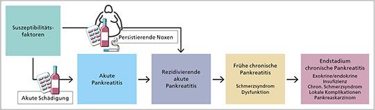 Krankheitskontinuum der Pankreatitis