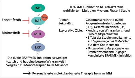 Abb. 2: BIRMA-Studie (mod. nach (10)).