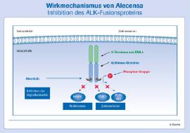 Darstellung des Wirkmechanismus von Alectinib