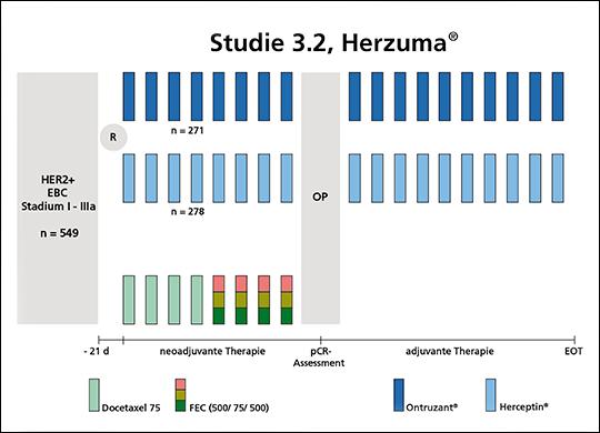 Abb. 1 Studiendesign der Zulassungsstudie von Herzuma