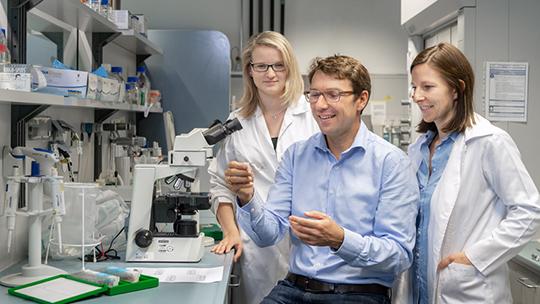 Nicht Zellstress allein führt zum Tumorwachstum, sondern die Zusammenarbeit von Stress und Mikrobiota, fand Prof. Dirk Haller heraus.