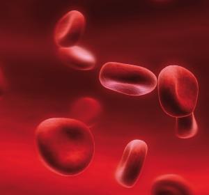 PFS und Verträglichkeit unter Acalabrutinib-Monotherapie vs. IdR/BR bei r/r CLL verbessert