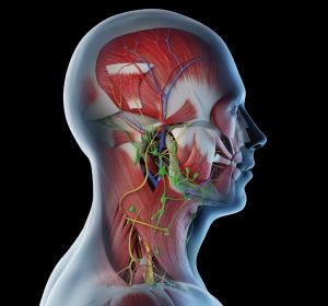 Chirurgie+von+Kopf-Hals-Tumoren