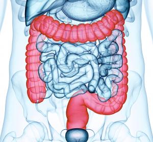 Lebertransplantation+bei+Metastasen+des+kolorektalen+Karzinoms