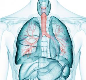 Stellenwert+der+Immuntherapie+mit+Nivolumab+und+Ipilimumab+bei+RCC+und+NSCLC