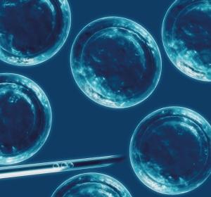 CMML%3A+Pr%C3%A4diktiver+Transplantations-Score