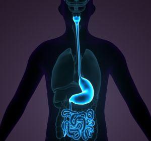 Neue+Therapieoption+bei+gastrointestinalen+Tumoren%3A+Nivolumab+beim+ESCC+%E2%80%93+3-Jahres-Update+der+Studie+ATTRACTION-3