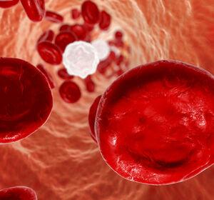 Head-to-head-Vergleich+von+Acalabrutinib+und+Ibrutinib+sowie+langfristige+Krankheitskontrolle+bei+der+CLL