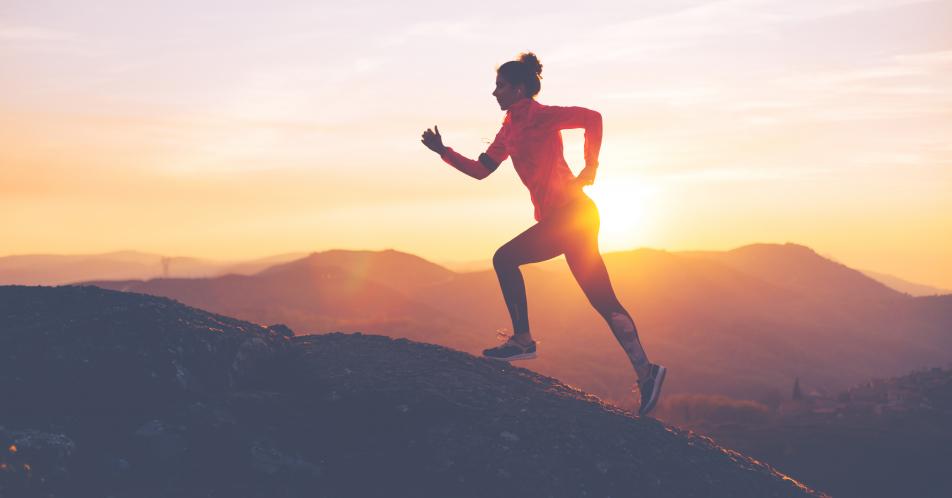 Krebspr%C3%A4vention+und+Sport+%E2%80%93+aktuelle+Studien+zum+Einfluss+von+Sporttherapie+und+Training