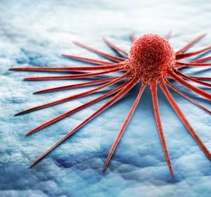 Mit der PD-L1-Hemmung das Immunsystem aktivieren