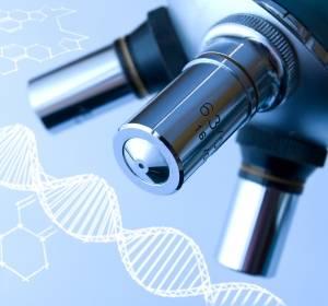 C.R. Brupbacher Krebsforschungspreis 2017 würdigt onkologische Grundlagenforschung