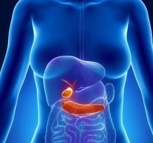 Bauchspeicheldrüsenkrebs mit immunologischen Ansätzen bekämpfen