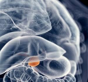Cholangiokarzinom: Ergebnisse der Phase-I-Studie mit ABC294640