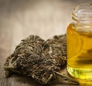 Mit Cannabis gegen Krebs: Hype oder Hoffnung?