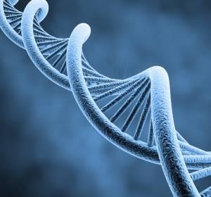 Evidenzgrad 1A für 70-Gen-Brustkrebs-Test zur Bestimmung des Rezidivrisikos