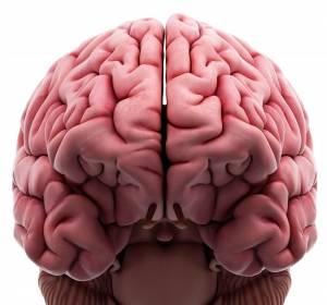 Hochdurchsatz-Sequenzierung in der Neuropathologie