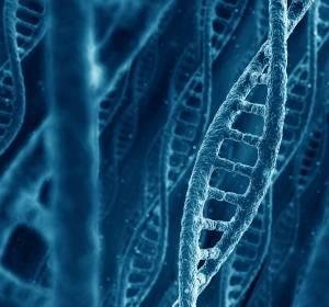 Rätselhafte Genabschriften nach epigenetischer Krebstherapie sind mögliche Biomarker