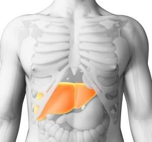 Etwa jeder fünfte Patient mit hepatozellulärem Karzinom spricht auf Immuntherapie mit Nivolumab an
