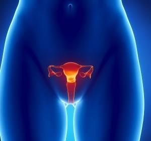 Molekularbiologisches Testverfahren zur sicheren Früherkennung von Gebärmutterhalskrebs
