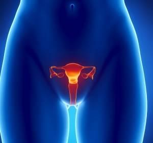 Gebärmutterhalskrebs: Tumore erkennen, bevor sie entstehen