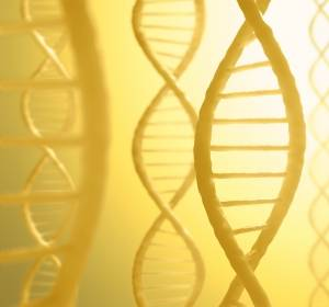 Mit RNA-Interferenz können krankheitsrelevante Gene abgeschaltet werden