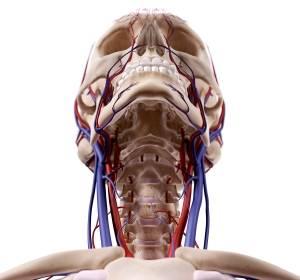Nivolumab bei Plattenepithelkarzinom im Kopf-Hals-Bereich: Zusatznutzen für bestimmte Patienten