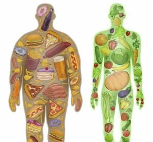 Förderpreis für medizinische Ernährungsforschung