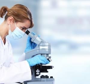 Fehlgesteuerter Proteinabbau fördert Leukämien und Hirntumoren
