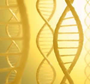 OPTIMA: Kosten-Nutzen-Analyse von Genexpressionstest für die Therapieentscheidung beim nodal-positiven frühen Brustkrebs
