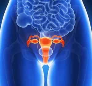 Verlaufsstudie zum Zervixkarzinom startet