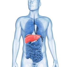 Förderung von wissenschaftlichen Leistungen zum hepatozellulären Karzinom